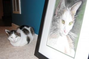Tiger & Snowflake's Portraits