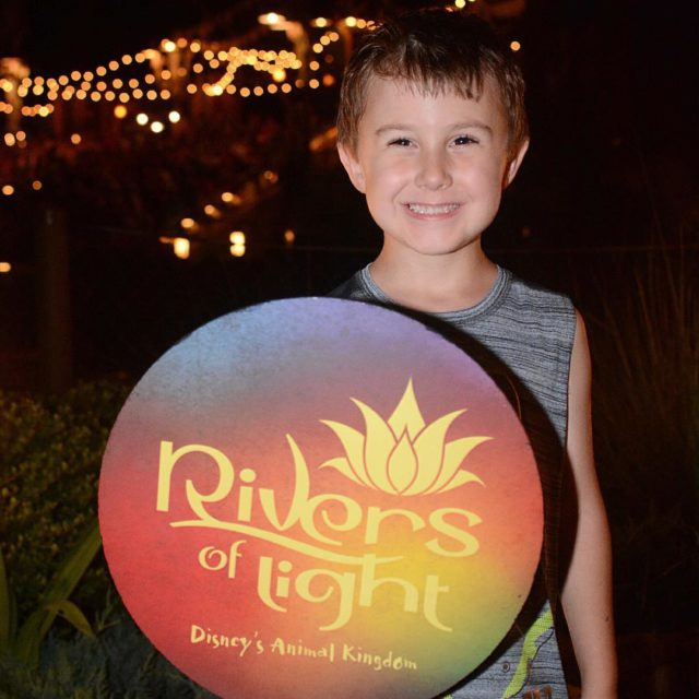 He cant get any more adorable!!! riversoflight animalkingdom disneysanimalkingdom lightshowhellip